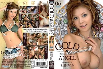Gold Angel Vol.06