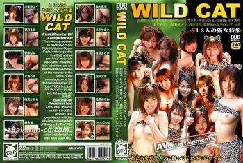 WILD CAT-12隻貓女合集-1